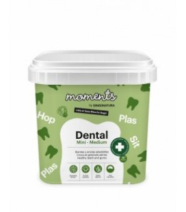 MOMENTS DENTAL RAZA MINI MEDIUM 500GR